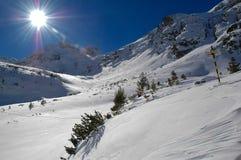 在山的晴朗的冬天 免版税库存图片