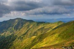 在山的晴朗的夏天场面 库存照片