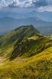 在山的晴朗的夏天场面 库存图片