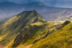 在山的晴朗的夏天场面 免版税库存照片