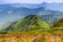 在山的晴朗的夏天场面 免版税图库摄影