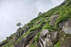 在山的绿色岩石倾斜 免版税库存照片