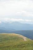 在山的绿色自然样式 免版税图库摄影