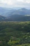 在山的绿色自然样式 图库摄影
