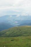 在山的绿色自然样式 免版税库存图片