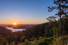 在山的HDR日出在一棵参天的杉木旁边 库存图片