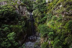 在山的Levada从马德拉岛,从葡萄牙的火山岛 库存图片