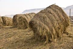 在山背景的农村风景  免版税库存照片
