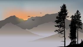 在山背景的孤独的杉木与飞鸟 免版税库存图片