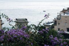 在山背景的美丽的大厦  花包围 库存图片