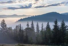 在山脉的雾在日出光 库存图片