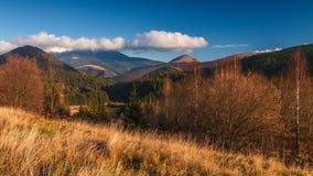 在山脉Velka Fatra的秋天风景 库存照片