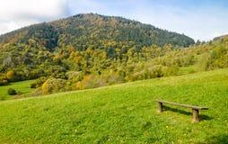 在山草甸的长凳 免版税库存照片