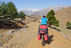 在山蛇纹石的骑自行车者骑马在土耳其 图库摄影