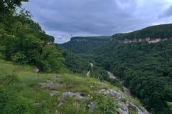 在山谷的美好的风景 夏天绿色叶子o 免版税图库摄影