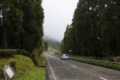 在山路的旅行有雾的 免版税图库摄影