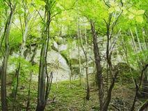 在山里面 库存图片