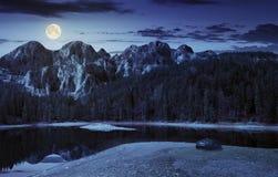 在山附近的湖在杉木森林里在晚上 免版税库存图片