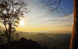 在山顶部的树:Nam Nao国家公园,泰国 免版税库存图片