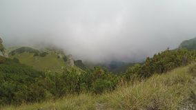 在山顶面美好的风景的浮动雾时间间隔与绿色森林和谷- 股票视频
