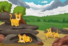 在山风景背景的老虎 免版税库存图片