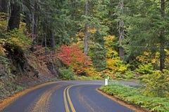 在山高速公路的美丽的秋天叶子 免版税库存照片