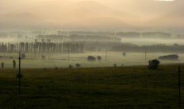 在山麓小丘的雾 库存图片