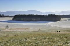 在山麓小丘的晴朗的下午 免版税库存照片