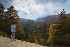 在山,在森林里,在一明亮的好日子 免版税图库摄影