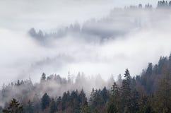 在山,阿尔卑斯的浓雾 库存图片