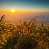 在山, Phu Tabberk,碧差汶府顶部的日出 免版税库存图片