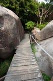 在山, Similan泰国上面的木道路  库存照片