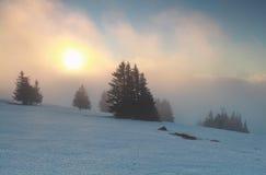 在山费尔德伯格的有雾的冬天日出 免版税库存照片