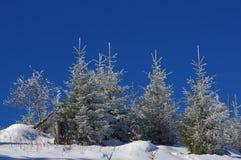 在山12的冬天风景 免版税库存图片