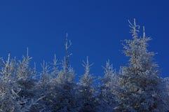 在山13的冬天风景 免版税库存照片