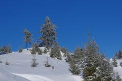 在山11的冬天风景 免版税库存照片