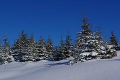 在山14的冬天风景 免版税库存照片