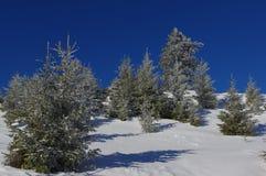 在山15的冬天风景 免版税库存照片
