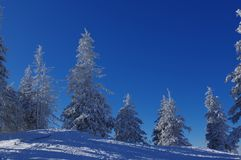在山16的冬天风景 免版税库存图片