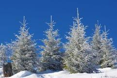 在山17的冬天风景 免版税库存照片