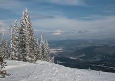 在山#003的冬天 免版税库存照片