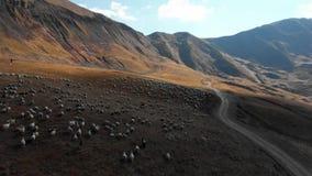 在山4K史诗寄生虫飞行高加索小山和谷秀丽格鲁吉亚自然的路 影视素材
