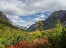 在山Kodar土坎的秋天 库存照片