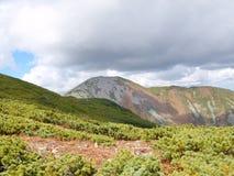 在山Oblachnaya顶部的看法 在Primorsky地区南部 免版税库存图片