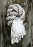 在岗位的被打结的绳索 图库摄影