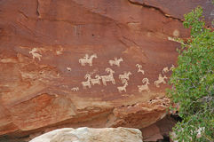 刻在岩石上的文字、红色岩石和沙漠环境美化,西南美国 库存图片