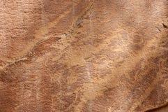 刻在岩石上的文字或岩石艺术雕刻在Freemont,犹他 库存图片