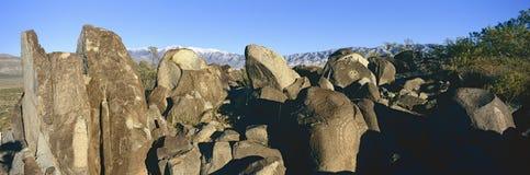 刻在岩石上的文字的全景图象在三条河刻在岩石上的文字全国站点,土地管理站点,特点a (BLM)局的更多tha 免版税库存照片