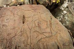 刻在岩石上的文字, altai, Kalbak塔什 库存图片
