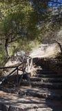 在岩石中的一条道路在Montessu大墓地 免版税库存照片